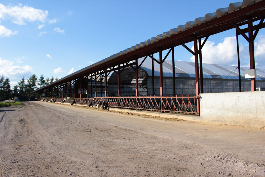 イチゴミルク牧場(池田牧場)牛舎の外観