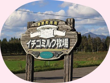 イチゴミルク牧場・池田牧場のある音更町は意外に便利!?